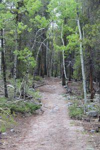 Brown's Creek Trail, the EZ part